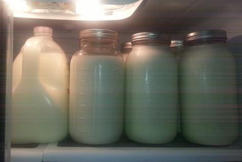 Too Much Milk